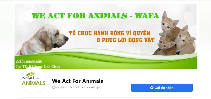 we act for animals